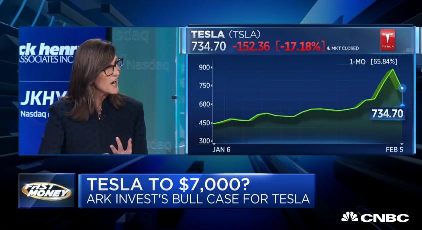 """Cathie Wood na CNBC, conhecida como """"Tesla Bull"""", em fevereiro de 2020"""