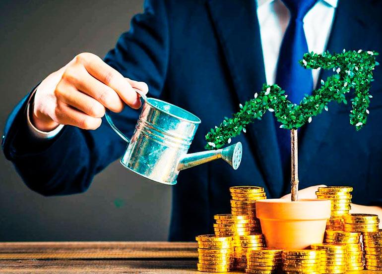 Como investir em Dividendos